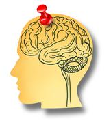 Brain reminder Stock Illustration