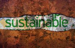 Stock Photo of sustainable text ongrunge background
