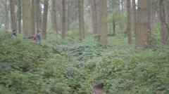 Couple hiking Stock Footage
