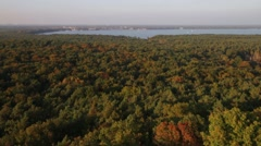Autumn forest on the lake top Stock Footage