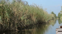 Boat trip on the canal of Linum ponds with reed around. Stock Footage