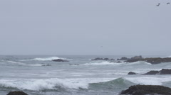 Pescadero Beach Coast Line & Waves Crashing Stock Footage