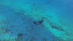 Diver dives down to the ocean bottom to see turtle Stock Footage