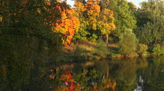 Stock Video Footage of Autumn forest. Lake. Autumn Landscape.