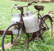 Rusty old bike of the milkman with two old milk cans and broken saddle Stock Photos