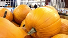 Pumpkins for sale Stock Footage