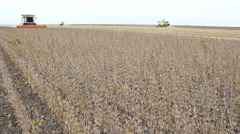 Time lapse combine harvest in field Soybean Stock Footage