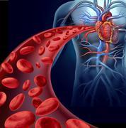 Heart blood health Stock Illustration
