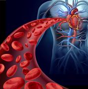 Stock Illustration of heart blood health