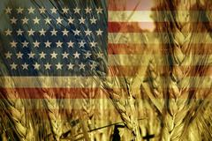 American agriculture Stock Illustration