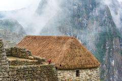 thatched roof at machu picchu - stock photo