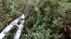 Cutting hedge Stock Footage