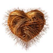 love roots - stock illustration
