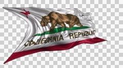 Flag of California republic Stock Footage