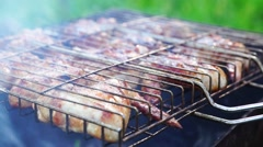 Chicken wings on grill at picnic Stock Footage