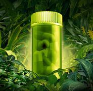 Medicinal plants Stock Illustration