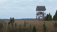 Birdwatching tower in overgrown lake with reeds Stock Footage