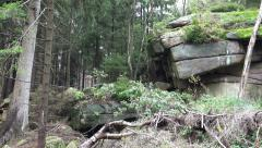 4k Big rocks in fairy tale landscape low mountain range Harz nature reserve Stock Footage