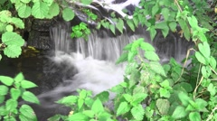 Cool clear water from mountain stream - remote spaces Stock Footage