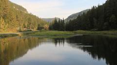 Mountain stream pool Stock Footage