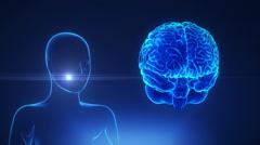 female thalamus in loop brain concept - stock footage