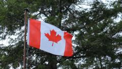 Rough Canadian flag at cottage. Stock Footage