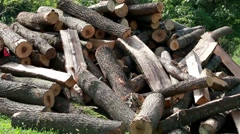 Stack of wood logs Stock Footage