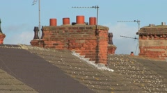 Row of Terrace House Chimney Pots Stock Footage