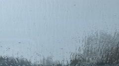 Rain Water on Glass Stock Footage