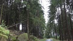 4k Big rocks beside small street in low mountain range Harz nature reserve Stock Footage