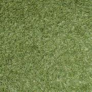 green grass soccer field texture and background - stock photo