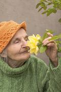 Stock Photo of elderly woman smelling yellow rose flower