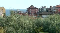 Europe Italy Liguria Pietra Ligure 007 houses behind olive plantation Stock Footage