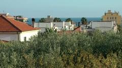Europe Italy Liguria Pietra Ligure 006 coast behind tops of olive trees Stock Footage