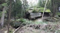 Big rocks zoom in low mountain range Harz nature reserve HD Footage