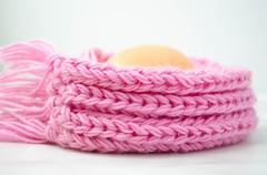 Eggs  in the warm pink scarf - stock photo