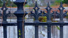 Closeup of Iron Fence Tips With Vines Lock Off Stock Footage