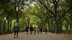 Slow motion wide shot of people walking in Central Park / New York City, New Stock Footage