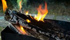 Brazier with burning firewood. Time lapse Stock Footage