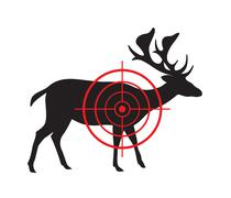 Vector image of a deer target on a white background. Stock Illustration
