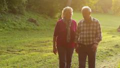 Senior Couple Walking in the Park Stock Footage