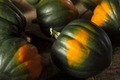 raw organic green acorn squash - stock photo