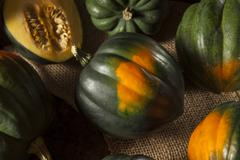 Raw organic green acorn squash Stock Photos