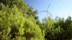 Green forest and windmill on sunny day  Stock Footage