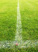 Cross of painted white lines on plastic football grass. Artificial green texture Stock Photos