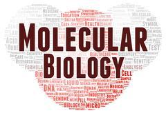 molecular biology word cloud shape - stock illustration