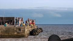 Mackerel fishing int the harbor of Angra do Heroismo, Azores Stock Footage