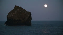 Island bird colony under the moon, north Atlantic ocean, Reykjanes, Iceland Stock Footage