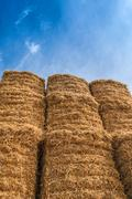 Bale of Hay Straw,Blue Sky Stock Photos