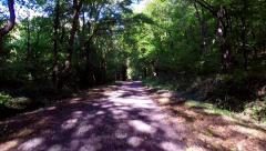Flying over a path through the woods - stock footage